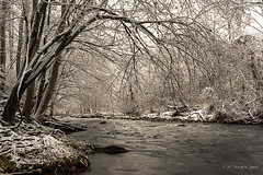 Overhanging the Little Pigeon River (Back Road Photography (Kevin W. Jerrell)) Tags: water waterways snow winter winterwonderland nikond7200 seviercounty tennessee backroadphotography cold rivers pigeonforge gatlinburgtn greatsmokymountainsnationalpark