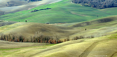 Minimal in Italy (Darea62) Tags: minimal landscape hills nature valdorcia tuscany toscana pienza panorama paesaggio trees fields unesco