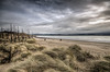 Out of the dunes (Glen Parry Photography) Tags: sea seascapes seafront nikon d7000 glenparryphotography beach dunes trees landscape clouds anglesey ynysmon northwales wales coast coastline