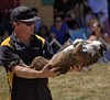 Hand Held (swong95765) Tags: dog trick stunt canine animal trainer show
