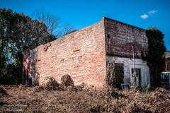 Troy, Grady and Ramer (Mick'zPicz) Tags: troy grady ramer alabama rural abandoned