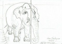 Elephant, India (Croctoo) Tags: croctoo croctoofr croquis crayon india inde elephant