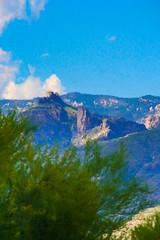 Tucson Mountains Digital Painting (randyherring) Tags: az arizona tucson us bloom cactus color desertplants flowers hotel mountains trees