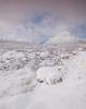 Powder Puff (Sarah_Brooks) Tags: glacialerraticboulders glencoe rannochmoor highland highlands scotland landscape snow snowscape buachaille etive mòr buachailleetivemòr ice bog morning sunrise feb2018 1402180830