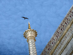 Taj Mahal fly over (Pejasar) Tags: tajmahal agra india painterly paintcreations angles bird fly over ornate details beauty