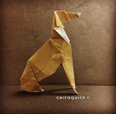 Origami Time! 08/52 Greyhound by @friedmanorigami #おりがみ #日本 #中國 #대한민국 #Uk #Deutsche #犬 #狗 #Origami #Paper #Foldedbyme #Foldoftheday #Instaorigami #Winter #ElParaiso #Sunday #Feb #25 #2018 #Caracas #Venezuela #chicoquick (chicoquick) Tags: おりがみ 日本 中國 대한민국 uk deutsche 犬 狗 origami paper foldedbyme foldoftheday instaorigami winter elparaiso sunday feb 25 2018 caracas venezuela chicoquick