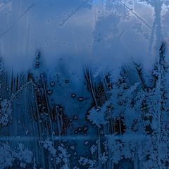 (jtr27) Tags: dscf5104xl jtr27 fuji fujifilm xt20 xtrans xf 1855mm f284 ois rlmois frost square glass abstract winter