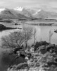 Lower Rannoch Moor - RPX25 (Pixelda) Tags: pixelda rollei rpx 25