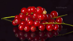 The one (K&S-Fotografie) Tags: johannisbeere currant studio fruit berry macro reflection delicious difference lebensmittel makro