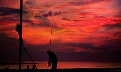 End of a long days fish (Allan Jones Photographer) Tags: rod fishing fisherman line rodandline fishingrod arty artistic sea clouds reel tackle bait allanjonesphotographer canon5d4 canonef24105mmf4lisiiusm silhouettes silhouette