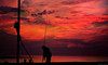 End of a long days fish (Allan Jones Photographer) Tags: rod fishing fisherman line rodandline fishingrod arty artistic sea clouds reel tackle bait allanjonesphotographer canon5d4 canonef24105mmf4lisiiusm silhouettes silhouette