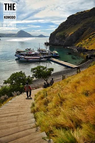 Komodo Island Adventure