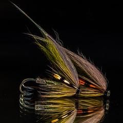 Salmonfly (bfossli) Tags: macro flyfishing fishing flytying fluefiske fluebinding fiske
