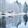 ~ little red cottage ~  Forsån, Riddarhyttan, Sweden (Tankartartid) Tags: rödstuga redcottage cottage stuga countryside landskap landsbygd landscape skog träd forest trees vinter winter creek å forsån riddarhyttan nordic norden europe sverige sweden waterreflections vattenreflektioner reflektion reflections vatten water instagram ifttt