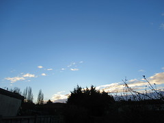 Tuesday, 16th, A cold start to the day IMG_1897 (tomylees) Tags: essex morning winter january 2018 16th tuesday weather blue