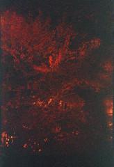 Dark (Magnus Bergström) Tags: lomography redscale xr lomographyredscalexr film 135 35mm luminox luminox356sl analog lomo sweden sverige karlstad haga kanalgatan kanal autumn höst leaves tree bridge water river canal värmland bush nature darkness evil