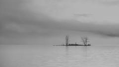 Tranquility (Chris Lakoduk) Tags: tranquility peaceful lake water bankslake grantcounty washingtonstate monochrome blackandwhite fog island trees landscape photography exploration