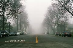 (Casey Lombardo) Tags: film filmphotography filmgrain filmscans expired expiredfilm kodak kodakgold gold100 longbeach longbeachca street streets fog foggy mist misty empty