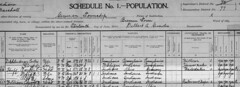1900 Clayton Huff census