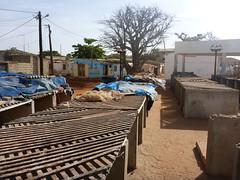 SenegalSalyMbour019 (tjabeljan) Tags: mbour saly kras tui senegal westafrca africa
