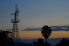 molino de viento (pau.sauleda) Tags: molino amanecer palmera ufraw