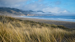 Limantour Beach (San Francisco Gal) Tags: limantourbeach pointreyesnationalseashore grass beach hill sand cloud cliff ocean pacific water sky ngc npc