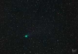 Comet C/2014 Q2 Lovejoy - Close up