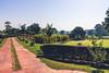 Foliage (AM_DB) Tags: landscapephotography landscape nikond40 gujarat india