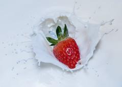 fraise1 (gregorysliwinski) Tags: fraise strawberry milk lait splash