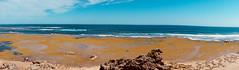 Rock Pool (NatalieTracy) Tags: bellarinepeninsula australia victoria pointlonsdale beach ocean water sea panoramic rockpool