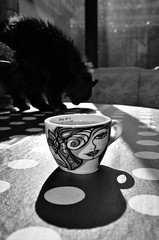 DSC_6215 (simonclaeye) Tags: coffee hot winter cat black