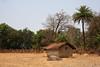 IMG_1759a (sensaos) Tags: india sensaos travel chhattisgarh 2013 asia