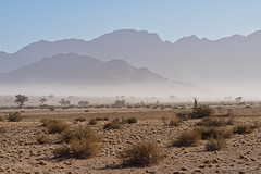 Dusty morning - from cars heading to Deadvlei (NettyA) Tags: 2017 africa desertquivercamp kibokoadventures namibia sossusvlei arid desert landscape morning rocks safari travel namibdesert namibnaukluftnationalpark dust