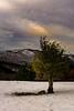 Bakardadean (aingerubidaurreta) Tags: urkiola snow winter mountain mendi trees euskalherria euskadi europe paysbasque paisaje paradise colors cold sky clouds