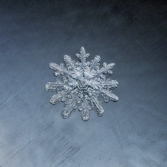 2 flakes fused together (superdavebrem77) Tags: snowflake glass macro fusion mutant