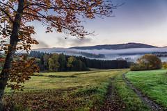 Morning Mist (*Capture the Moment*) Tags: 2017 clouds fotowalk herbst panoshot panoramablick panoramaview sonne sonya7m2 sonya7mii sonya7mark2 sonya7ii sonyfe2470mmf4zaoss sonyilce7m2 sun wetter wolken
