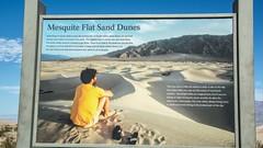 Death Valley National Park California . Mesquite Flat Dunes (Feridun F. Alkaya) Tags: zabriskiepoint nps ngc deathvalleynationalpark california coyote usa nationalpark sanddunes jackal desert dvnp deathvalley mesquiteflatdunes dunes saltflats salt