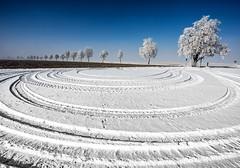 Yearning for winter (++sepp++) Tags: landschaft landscape landschaftsfotografie winter bayern bavaria deutschland germany graben schnee snow sonnig sunny raureif hoarfrost bäume trees alley allee spuren track