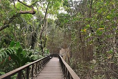 DSC_2149 (Arianna León) Tags: parqur parque historico gye gua guayaquil guayas photography nikond3100 ary art nature museum