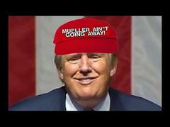 MAGA! (doctor075) Tags: maga robertmueller donaldjtrump donaldjdrumpf republican gop teaparty humourparodysatirecomedypoliticsrepublicanteapartygopfoxnews