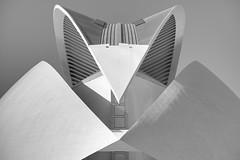 B&W symmetry (Rob McC) Tags: bw blackandwhite monochrome operahouse valencia spain cityofartandscience architecture building abstract symmetry santiagocalatrava
