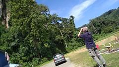 Dec 2017 Lothar (Malaysia Bird Guide) Tags: birdingtour birdintrip birding birdwatching nature2pixel birdingmalaysia twitcher