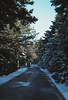 An icy road (sotirisdimi) Tags: parnitha greece snow mountain deer mushroom