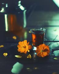 Midnight Tea (Ashique Ridwan) Tags: tea flower yellow teapot composition still stillifephotography creative closeup happy coffe coffee sundayhighlights night light summer family orange antique bangladesh canon flashfree