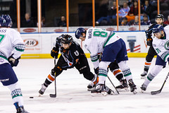"""Kansas City Mavericks vs. Florida Everblades, February 18, 2018, Silverstein Eye Centers Arena, Independence, Missouri.  Photo: © John Howe / Howe Creative Photography, all rights reserved 2018 • <a style=""""font-size:0.8em;"""" href=""""http://www.flickr.com/photos/134016632@N02/26516790928/"""" target=""""_blank"""">View on Flickr</a>"""