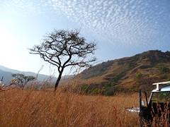 below Little Switzerland, Drakensberg