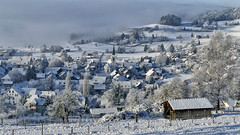 rafz_57_03012017_09'49 (eduard43) Tags: rafz 2017 januar schnee gnal rafzerfeld zürcherunterland