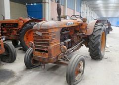 Fiat R 80 (samestorici) Tags: trattoredepoca oldtimertraktor tractorfarmvintage tracteurantique trattoristorici oldtractor veicolostorico r80 80r 70