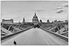 St Paul's Cathedral and pigeon (Ivano Di Benedetto) Tags: milleniumbridge stpaul london londra bw biancoenero blackandwhite bridge bn