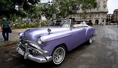 Purple Chevy in Havana (Poocher7) Tags: people male driver car oldchevyclassic purplecarpurple mauve shiny havana cuba square street cheverolet classiccars purpleflag sunglasses portrait carribean streetphotography sundaylights